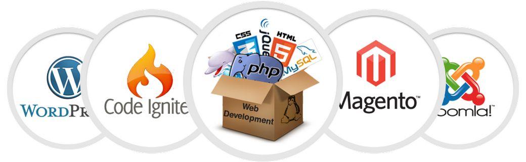 Web-студия Bloggerd